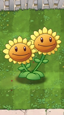 Download-Plants-vs-Zombies-Sunflower